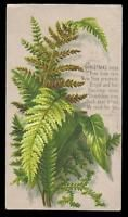 F86 - EMBOSSED FERNS - VICTORIAN XMAS CARD