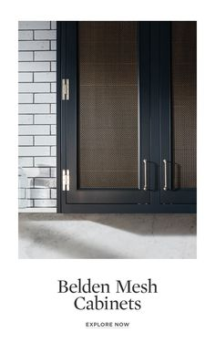 waterworks - belden mesh cabinet Kitchen Cabinet Doors, Cupboard Doors, Kitchen Redo, Kitchen Remodel, Providence Homes, Armoire, Metal Mesh, Updated Kitchen, Building A House