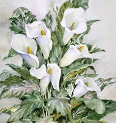 Joy Waldman   WATERCOLOR          Calla Lily