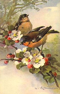 Interior&Decor: Catherine Klein. Птицы. Часть 2