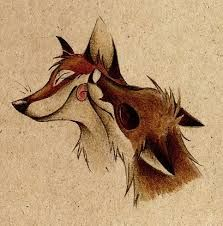 Culpeo-Fox - Google-Suche