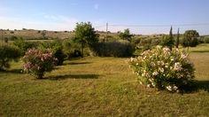 Giardino di campagna, in Valle Maggiore Toscana Italy