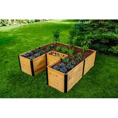 Vita The gardenis crafted from beautiful, sustainably sourced FSC cedar and inspired by the African keyhole gardening technique. It's an ingenious system that lets you compost household waste and easily grow fresh, organic vegetables in the same garden. A central compost basket is used to conveniently place your daily kitchen scraps. This household waste is then organically transformed into nutrient rich soil that nourishes your vegetables. Compost fed soil better holds moisture and… New England Arbors, Wood Raised Garden Bed, Raised Beds, Building Raised Garden Beds, Elevated Bed, Elevated Garden Beds, Cedar Lumber, Cedar Planters, Garden Planters