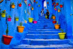 Chefchaouen, The Blue City Visit Morocco, Morocco Travel, Morocco Chefchaouen, Desert Ecosystem, Desert Tour, Blue City, Steve Mccurry, Painted Floors, World Of Color