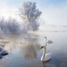 Ces merveilleuses photographies de paysages enneigés vous montrent toute la beauté de l'hiver