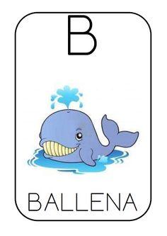 B - ballena