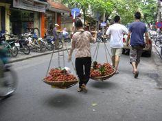 ベトナム、ハノイ(2005年)  旧市街のライチ売り