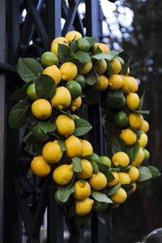 Lemons & Limes.....