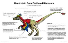 Made me smile :) How (not) to draw a feathered dinosaur
