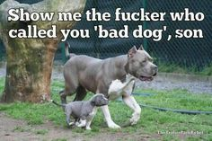 Who called you a bad dog???!!!!! I'LL KILL HIM!!!!!!