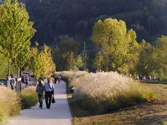 IN-SITU_Rochetaillee-banks-of-Saone-10 « Landscape Architecture Works…