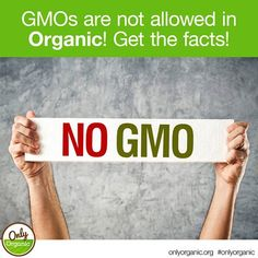 FACT: GMOs are not allowed in organic food production! Got questions? Go here…