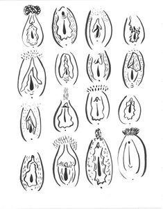 Una gran impresión de vaginas diferentes 16 Hay 4 versiones   V1