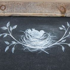Image result for bird nest chalkboard drawing