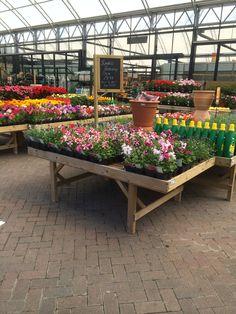 timmermans   garden centre   nursery   garden   outdoor