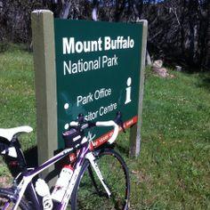 "The obligatory ""summit shot"" from Mt Buffalo National Park, Victoria Australia. Victoria Australia, Buffalo, National Parks, Challenges, Water Buffalo, State Parks"