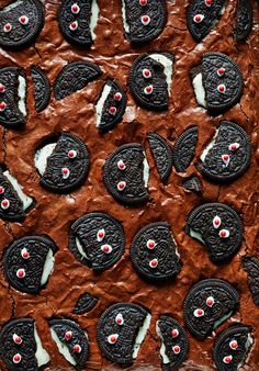 Martha Stewart's Monster Oreo Brownies - Hifow - http://howto.hifow.com/martha-stewarts-monster-oreo-brownies-hifow/