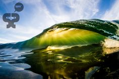 Green Gold by Sacha Specker