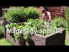 Magaságy ápolása: kert a magasban, ne add lejjebb! Gardens, Plants, Balcony, Garden, Flora, Plant, Garden Types, Tuin, House Gardens