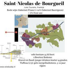 Saint-Nicolas-de-Bourgueil Loire Valley Wine, French Wine Regions, Bordeaux Wine, Saint Nicolas, Cabernet Sauvignon, Wine And Spirits, Infographics, Tours, Red Wine