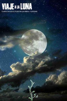 Viaje a la luna Cuarto intento Plantar un árbol y esperar