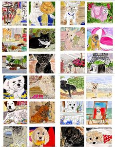 Adoptable Pet Portraits by Fifi Flowers
