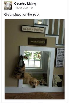 I LOVE this idea - great if you have a dog