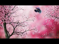 (42) Lazíts ! ... ZEN RELAX * Cseresznyevirág, Fuji, Sintó, Bushido és a Szamurájok üzenete - YouTube