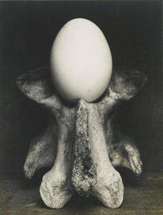 EDWARD WESTON | Egg and Bone