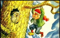 Julekort DAMSLETH. Bjørneserien. Damsleth 703. Gutt som henger i en gren, mens en ugle titter på ham.