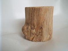 Old Elder Wood Stump Wood Stump Wood Decor Tree Stump Nigra Wood Stumps, Wood Logs, Wood Tree, Wood Planks, Tree Stumps, Wood Sticks Crafts, Wood Log Crafts, Wood Home Decor, Nature Decor