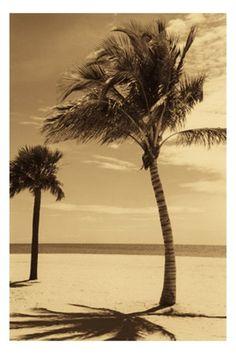 Uma imagem que poderia facilmente me mandar de volta as primeiras idas a praia...