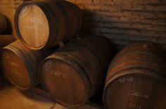 Регион приорат известен своим черным красным вином и, как оказалось, виноделен там море. В статье была ссылка на общий сайт по региону: http://www.turismepriorat.org/en/. Так как мы хотели посетить не серийное производство, а что-нибудь более прайват и желательно на русском языке, то выбрали именно эту винодельню. У них есть ссылка на афише мир тоже: http://mir.travel/sights/118686. Договариваться о времени и дате нужно заранее.