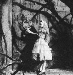 Charlotte Henry as Alice from Alice in Wonderland (1933). This picture is from a 1934 Big Little Book edition.