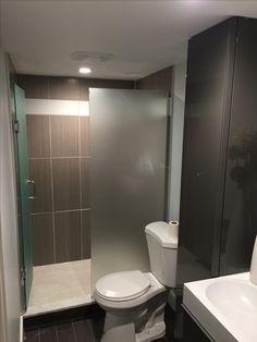 Small Bathrooms, Beautiful Bathrooms, Shower Screens, Southern Cottage, Walk In Shower, Showers, Bathroom Ideas, Toilet, Home Improvement