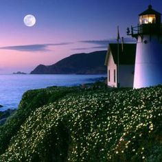 Cape Blanco HD | tags cliff cloud flower lighthouse moon