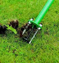 Gardening Tools For Handiced Google Search