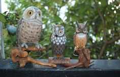 Three Vintage Wood Owls / Glass Eyes by MaceSpace on Etsy