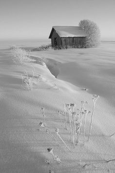 White on White | Content in a Cottage