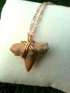 Gold Wire Wrapped Shark Tooth Necklace