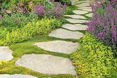 Ground cover plants add color, texture, and a lush, garden-like feel to your yard—all while offering a fix-and-forget solution for bare spots, steep slopes, and more. Our super gallery shows and tells you about more than 40 varieties. | Photo: Jerry Pavia | thisoldhouse.com