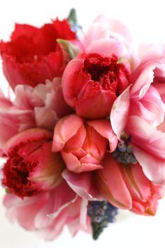 *bouquet of red flowers My Flower, Fresh Flowers, Beautiful Flowers, Pink Flowers, Rosa Rose, Deco Floral, Bouquets, Planting Flowers, Floral Arrangements