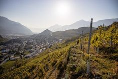 Ausflugsziele Schweiz: 52 Ideen für deinen Ausflug   Reiseblog Princess.ch Wallis, Zermatt, Mountains, Nature, Travel, Road Trip Destinations, Waiting, Naturaleza, Viajes