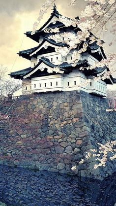 city_sakura_japan_spring