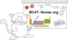 This is a component of my major and track. I am supposed to take the MCAT after graduating to get into Med School. I keep this in mind when attending classes. In order to get into my ideal med school I have to do good in this test. Biomedical Science, Science Biology, Life Science, Medical Students, Medical School, Biology Major, School Application, Med School, Study Motivation