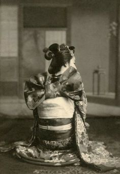 A maiko, young geisha in Osaka. The photo was taken in 1910's.