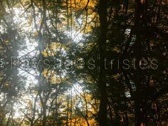 いいね!23件、コメント0件 ― 𝕃𝔼𝕆 𝕊𝔸𝕋𝕆(@etudellp)のInstagramアカウント: 「Paysages tristes☕        #leosato #poèmessaturniens #paysagestristes #1867…」