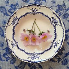 Pink Anemone on Vintage Plate and Fabric. Sweden delights!  Styling and Photography © Ingrid Henningsson/Of Spring and Summer