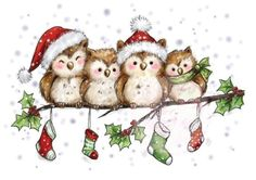 christmas birds- wild rose studio