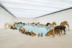 99_animals_cai-guo-qiang_03